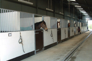 bowlby_equine-equestrian-construction-oxfordshire_slider_stables