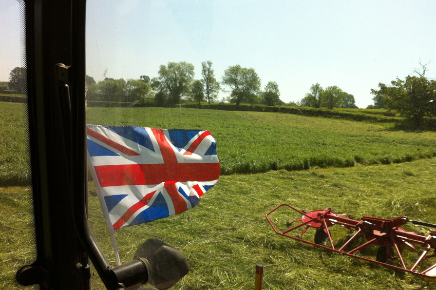 bowlby_equine-equestrian-supplies-oxfordshire_slider_Hay_haylage_bales